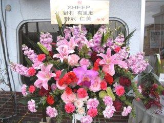 2009-04-05-03.jpg